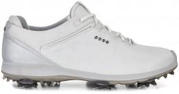 ECCO Golf Biom G 2 GTX Gore-Tex, white/buffed silver
